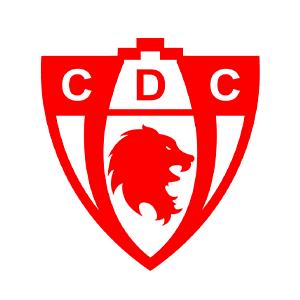 Deportes Copiapo
